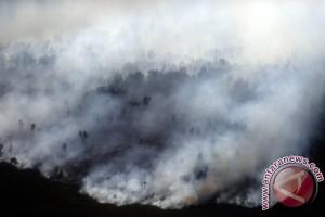 Sumsel masih siaga darurat kabut asap
