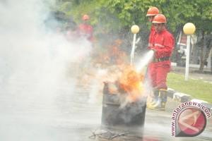 Simulasi kebakaran hutan