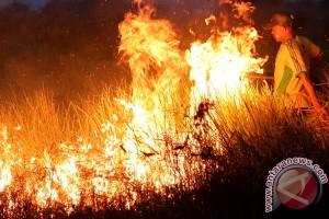Tim KLH tinjau cairan anti kebakaran