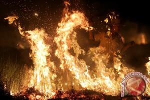 Kebakaran Lahan Sumsel