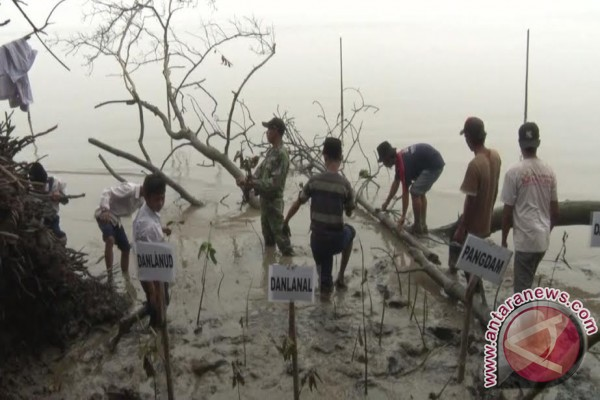 Indonesia miliki 25 persen mangrove dunia
