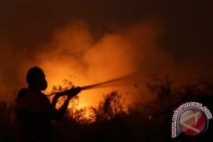 Baru tiga provinsi tetapkan siaga darurat Karhutla