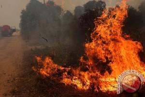 Empat titik panas di Sumatera berpotensi kebakaran