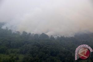Petugas  TNKS ajak siswa peduli kebakaran hutan