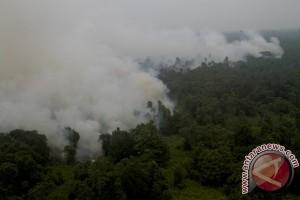 Sinar Mas miliki teknologi baru antisipasi kebakaran lahan