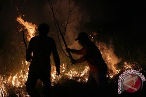 Memburu pembakar lahan dan hutan