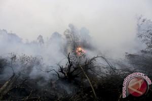 Gubernur Sumsel minta camat awasi titik api