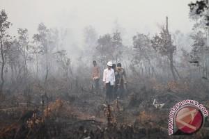 Areal hutan trenggalek terbakar dua hektare
