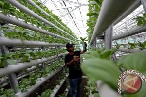 Lulus sekolah pertanian harus ciptakan lapangan kerja baru