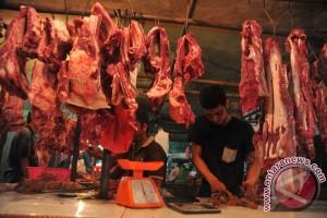 Stok daging Bulog Sumsel capai 75 ton