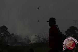 Perda Karhutla harus jadi acuan tanggulangi kebakaran