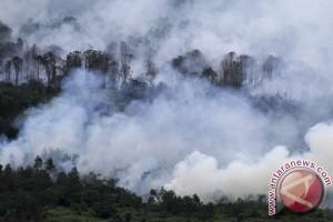 BPBD: warga diminta turut pantau kebakaran hutan
