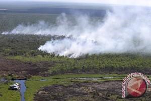 Indonesia keluarkan tiga taman nasional dari daftar bahaya