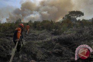 Petani mengaku sulit buka lahan tanpa bakar