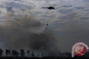BMKG: Sumsel dalam status aman bahaya kebakaran hutan