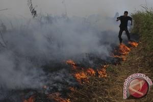 TNI waspadai karhutla di Rokan Hulu