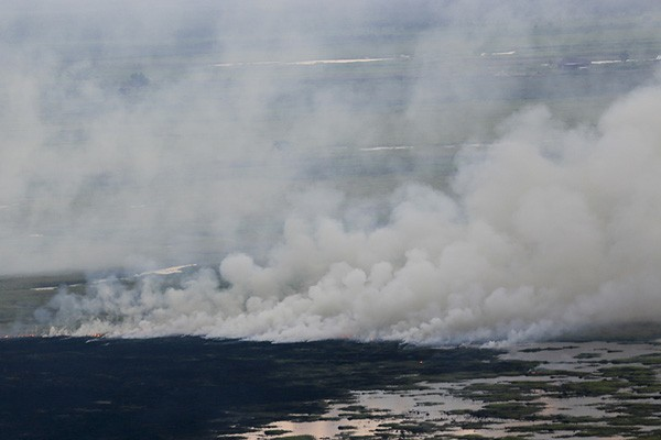 Indonesia bebas bencana asap pada 2016