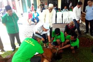 DPW PPP Sumsel potong hewan kurban