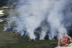 Kebakaran Lahan Di Ogan Komering Ilir