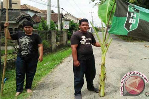 Mahasiswa tanam pohon pisang di Jalintim