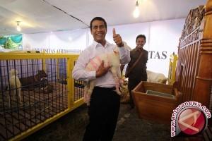 Mentan: Ketahanan pangan Indonesia terus membaik