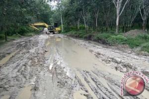 Jalan lintas perawang Riau yang rusak ditanami pohon