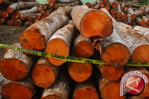Polisi amankan kayu gaharu dan minyak mentah