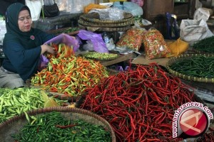 Kebutuhan cabai di Palembang 25 ton perhari
