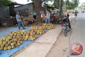 Trend buah durian tetap menanjak di pasaran