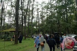 Taman Punti Kayu ramai pengunjung saat Imlek