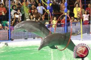 Oriental sirkus sebulan hibur warga Palembang