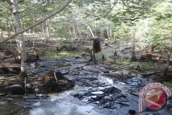 Walhi: perusahaan harus hentikan pencemaran lingkungan