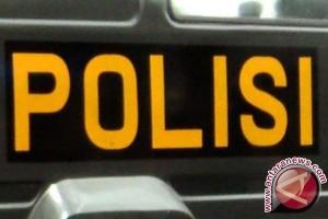 Polisi selidiki pemilik kayu meranti tanpa dokumen