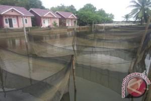 Pemkot Palembang bantu kelompok usaha perikanan