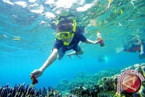 KKP: Terumbu karang vital bagi ekosistem laut