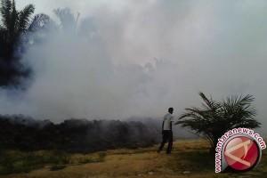 Masyarakat Mukomuko diminta laporkan pabrik cemari udara