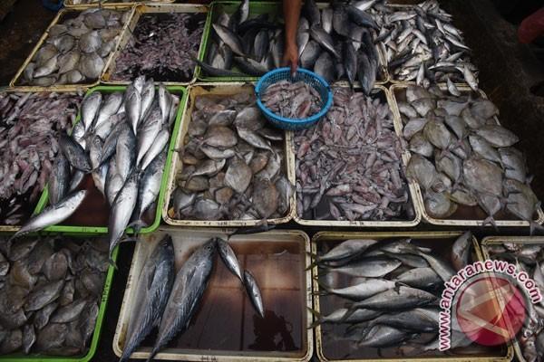 Pasokan ikan Palembang dari daerah terdekat