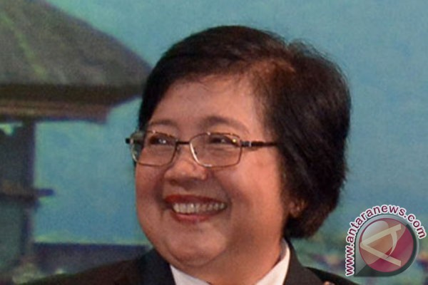 Nurbaya laporkan perkembangan perhutanan sosial ke presiden