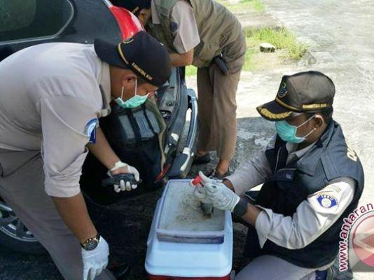 Balai Karantina Ikan Palembang monitoring penyebaran hama