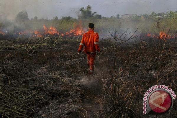Pemprov minta perbanyak posko Karhutla Palembang - Indralaya