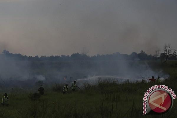 Plt Sekdaprov: Pencegahan Karhutla jadi perhatian utama
