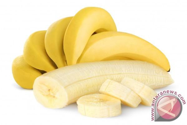 Fakta dan mitos seputar pisang