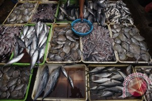 Pemkot Palembang dukung pencapaian target konsumsi ikan