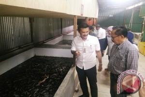 Sumatera Selatan ekspor belut perdana ke Tiongkok
