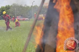 Sumsel mendorong perusahaan membentuk desa peduli api