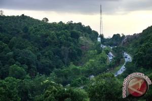 40 hektare hutan lindung Koba sudah direhabilitasi