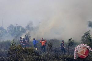 Kebakaran Taman Nasional indragiri Hulu berhasil diatasi