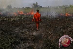 Perusahaan HTI diminta berdayakan masyarakat sekitar lahan