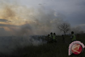 Polisi Padamkan Kebakaran Lahan