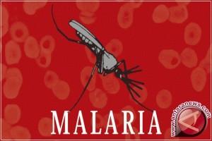 Kemenkes imbau masyarakat waspada malaria saat bepergian
